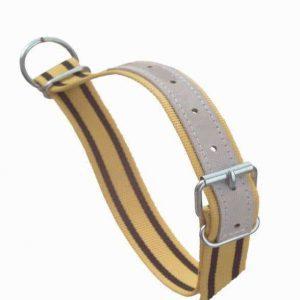 Halsband gelb mit D Ring und Schnalle