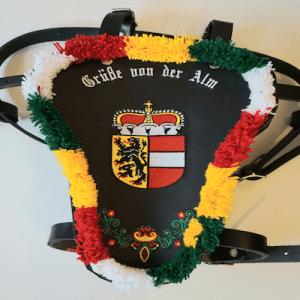 Larve mit Salzburger Wappen