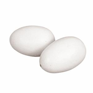 Nesteier für Hühner 2 Stück