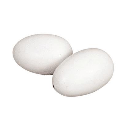 Nesteier für Hühner 2 Stück in Packung