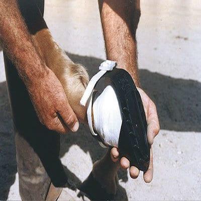 Pferde-Klauenschuh-SHOOF-2-3.jpg