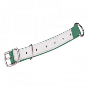 Halsband grün