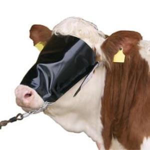 Viehblende mit Halfter