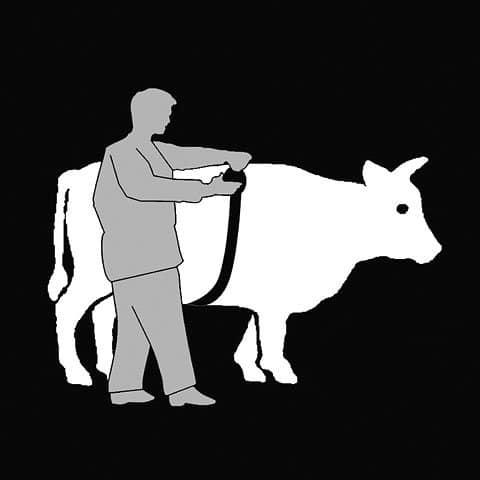 Viehmassband-Animeter-2-3.jpg