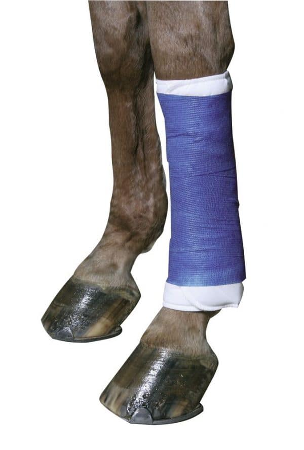 Selbsthaftende Bandagen EquiLastic+1 blau